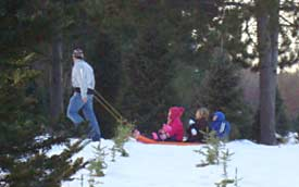 Pulling kids on toboggan